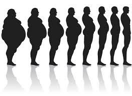 4 principes pour perdre du ventre